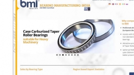 2013-bmibearing-cover2