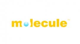 2005-molecule-logo