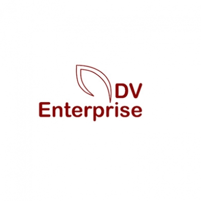 2012-dv-enterprise-logo