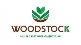 2019-woodstock-logo